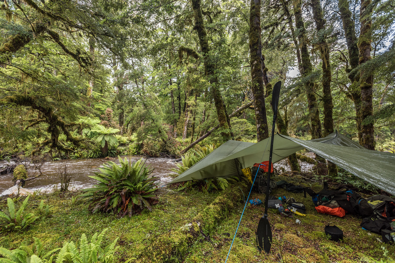Our first campsite next to an unnamed tributary of the Wairaurahiri River - after a night of rain.