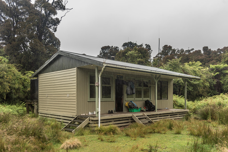Waitutu Hut, South Coast Track