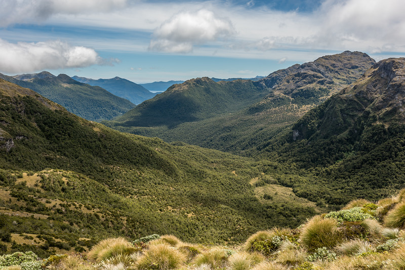 View down the Jeanie Burn from the south ridge of Rugged Mount, Cameron Mountains. Cunaris Sound is visible in the back, and a small speck of Long Sound in front. Unnamed Peak Pt 1229m is top right.
