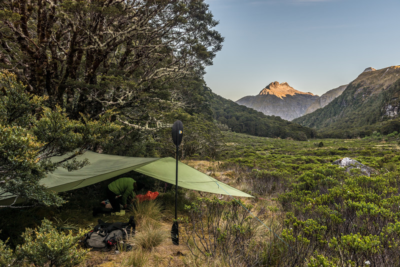 Campsite in the Iris Burn tributary west of Spire Peak. Mount Pickering is in the background.