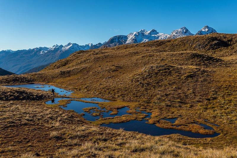 A small wetland on the Livingstone Range tops