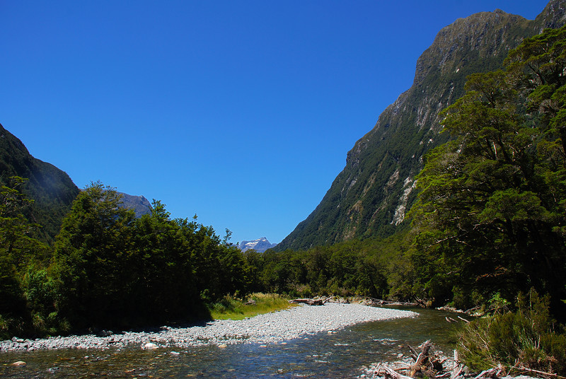 View down Sinbad Gully from the first river flats. Mt Philipps stands out on top right; The Twins at centre image