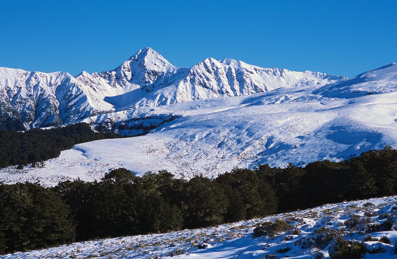Jackson Peaks