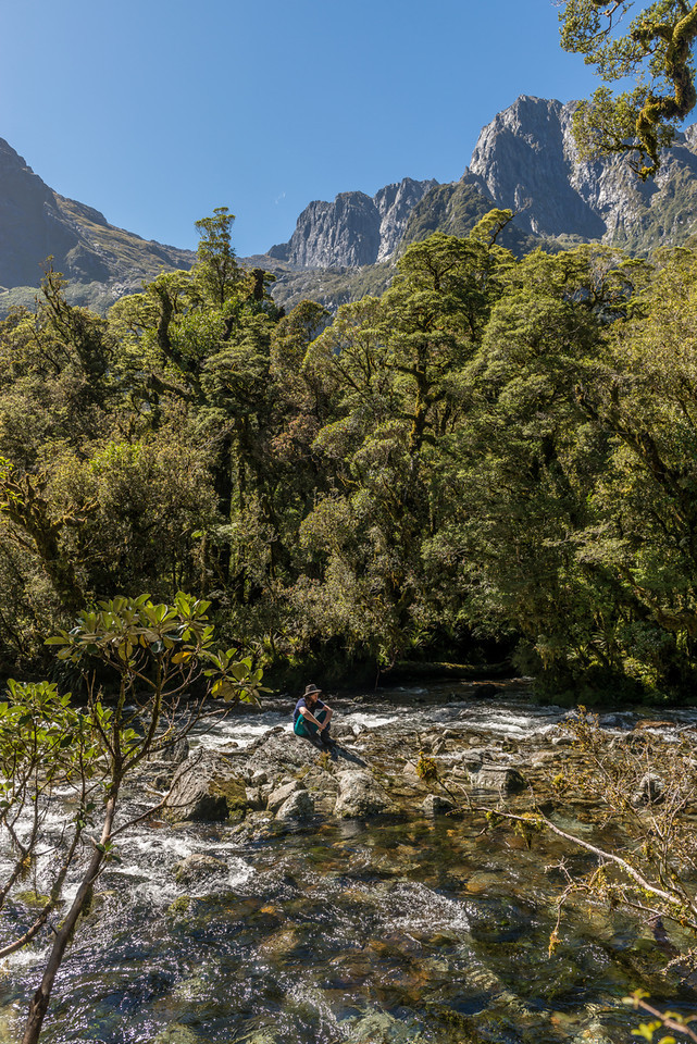 "Transit River. ""Mount Tusk"" (Pt 1633m) and Kakapo Castle above"