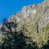 The sheer face of Steep Hill rises above MacKay Creek. 800m of vertical vegetated rock, probably appeals BASE jumpers and frozen turf climbers