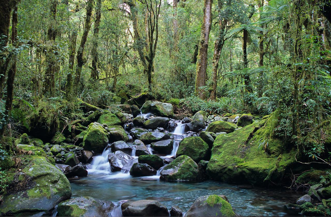 Esperance River