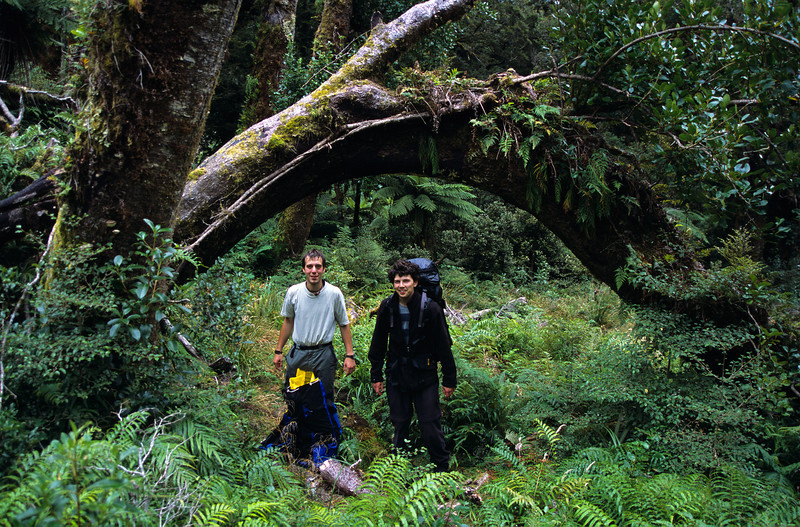 Petr and Horatiu on the Grave-Talbot Track, Gulliver River
