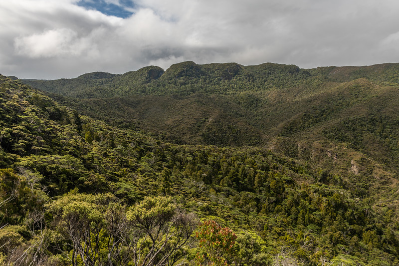 Rough country surrounding Macnamara Creek, Fiordland National Park.