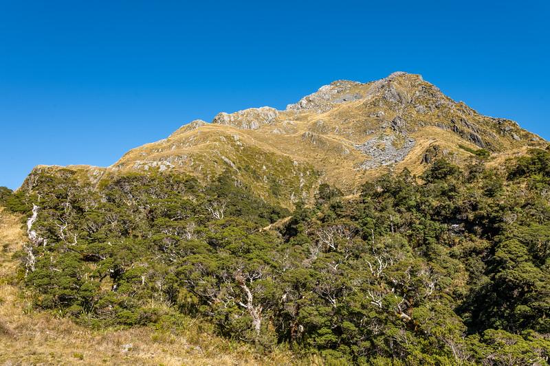 Pt 1366m. Skippers Range, Fiordland National Park.
