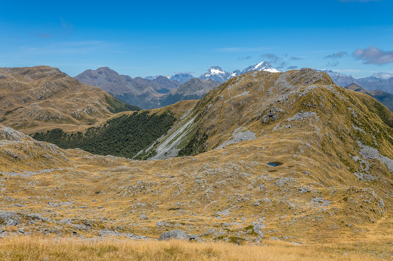 View south along the Skippers Range. Pt 1298m is just right of Mount Tutoko. Pt 1620m back left. Fiordland National Park.
