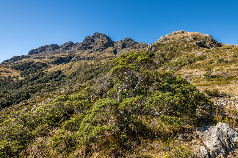 The lower ramparts of Pt 1620m. Skippers Range, Fiordland National Park.