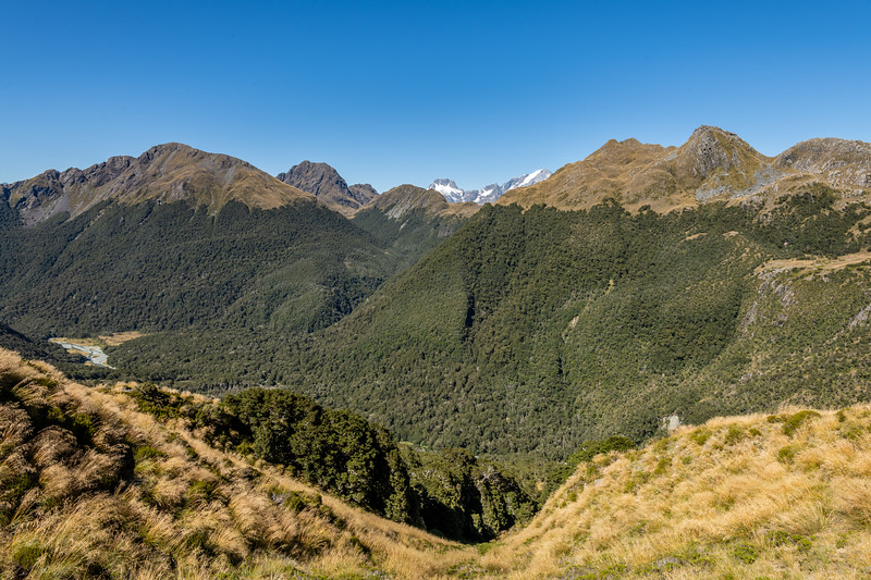 Looking south from the southern slopes of Pt 1366m, Skippers Range. Fiordland National Park.