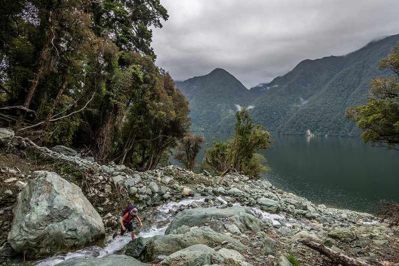 Crossing a ravine on the Demon Trail, Lake McKerrow. Hollyford Track, Fiordland National Park.