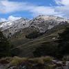 Mt Titiroa from bushline