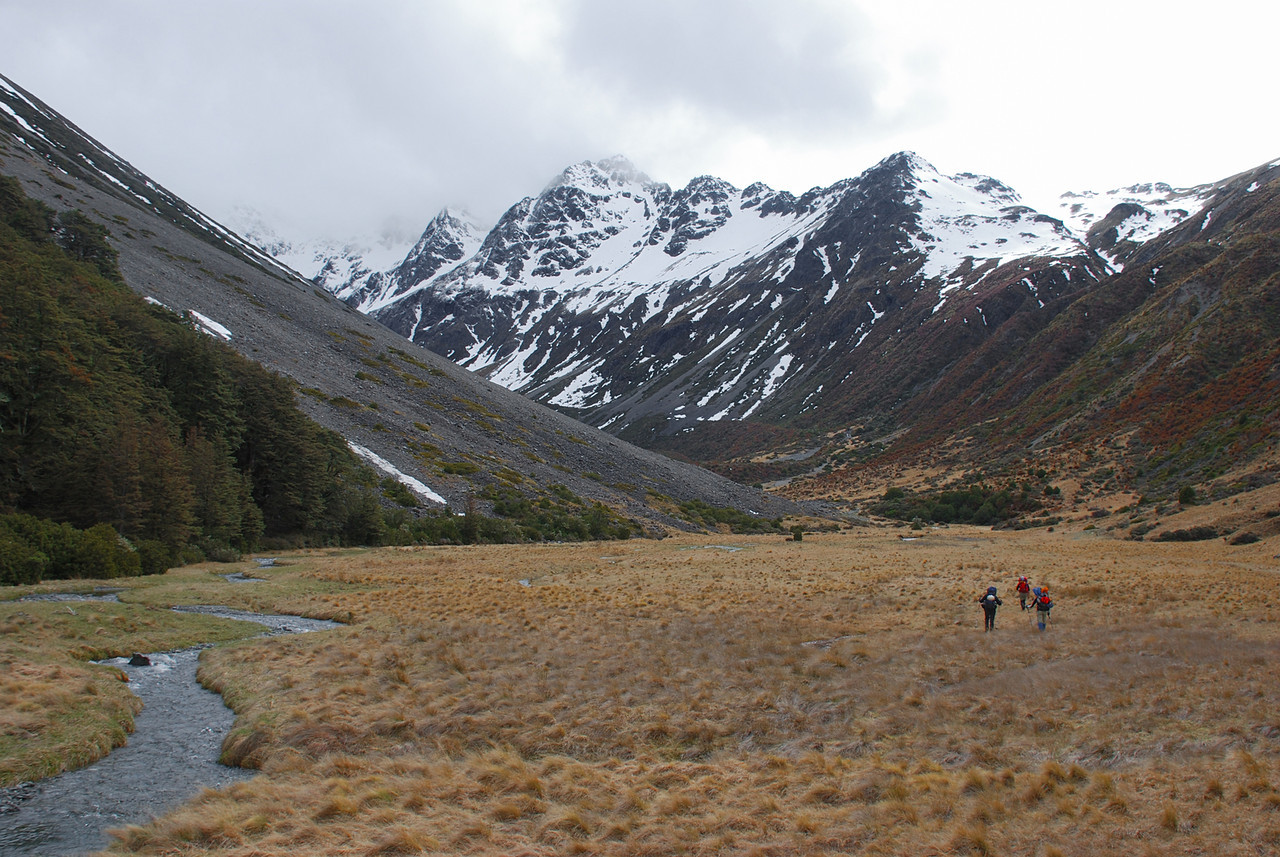Walking up the north branch of the Dingle Burn. Highlander Peak is partially obscured by cloud