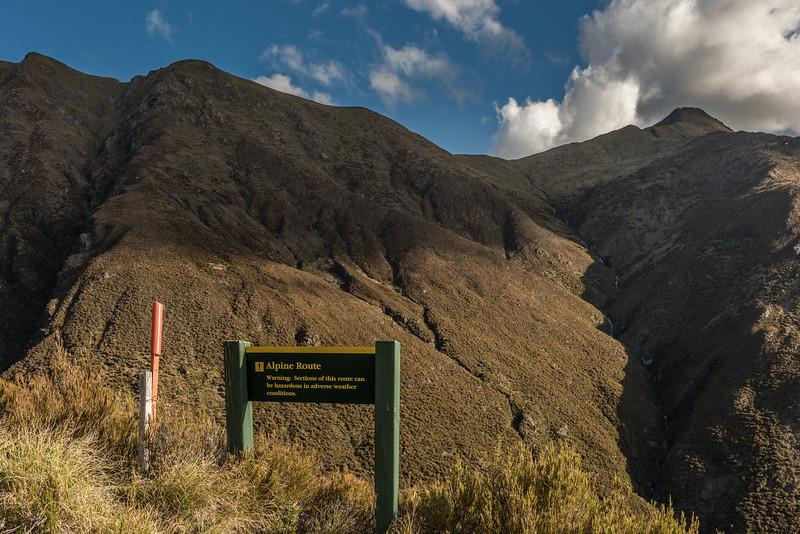 Mount Shrimpton Track.
