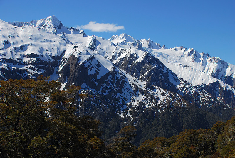 Mt Armstrong and Mt Brewster, Makarora Valley