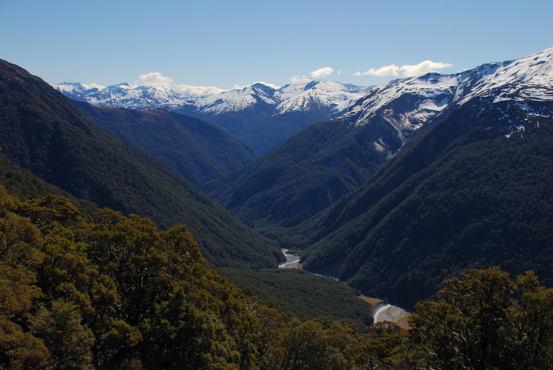 View down the Makarora River from bushline en route to Cotters Creek Saddle
