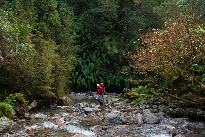 Friends Creek