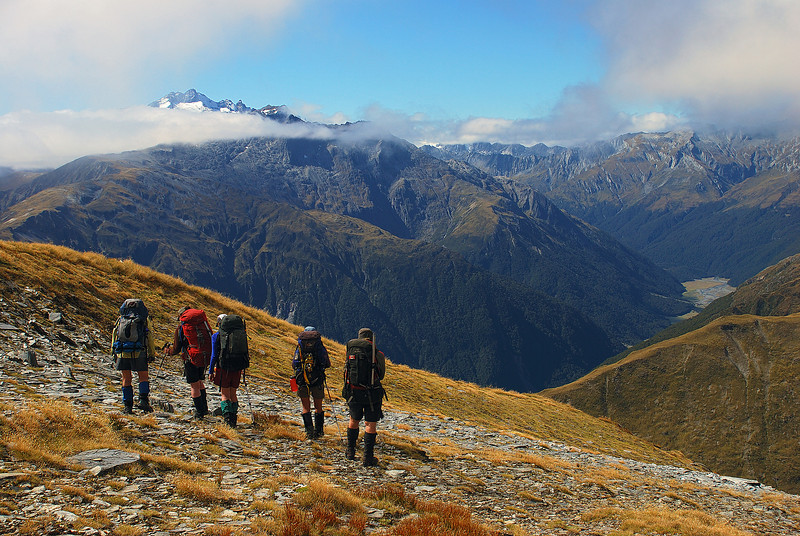 On the northern slopes of unnamed peak 1809m, Stewarts Creek. Mt Brewster and the Makarora River behind