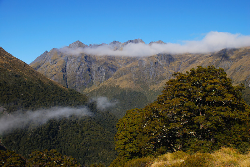 The peaks above Cameron Hut, Camerons Creek