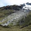 Bluffs above the Pass Burn