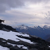 Chamois on the summit of Sisyphus, Lower West Matuki Peaks at right - Fog Peak, Shark's Tooth, Craigroyston