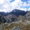 Mt Erebus and Xenicus
