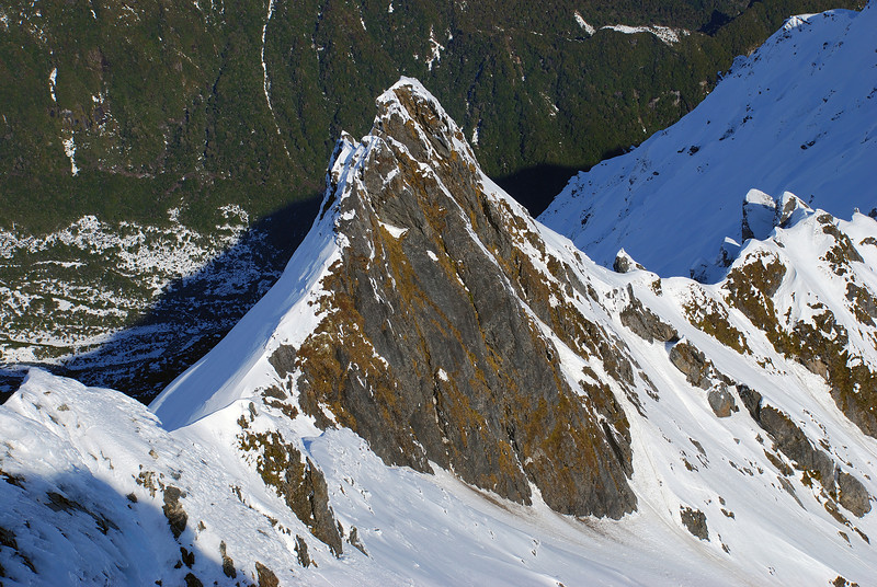 Gendarmes on the south-west ridge of Craig Peak, Fox Range