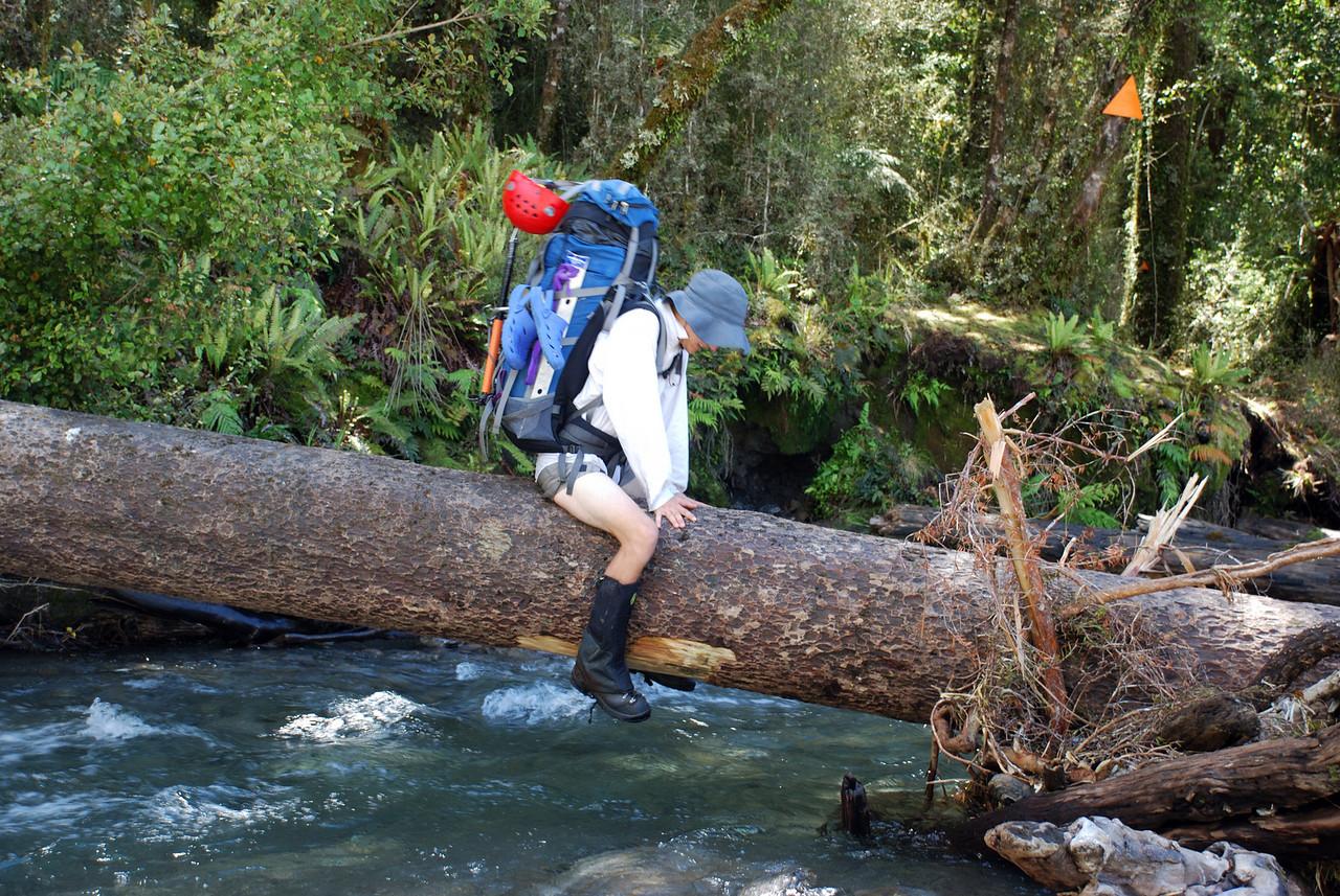 Crossing Harkells Creek