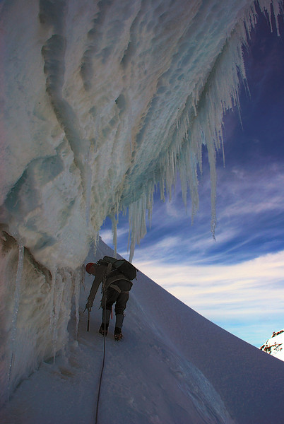 Icicle curtain on Mount Tasman's east face