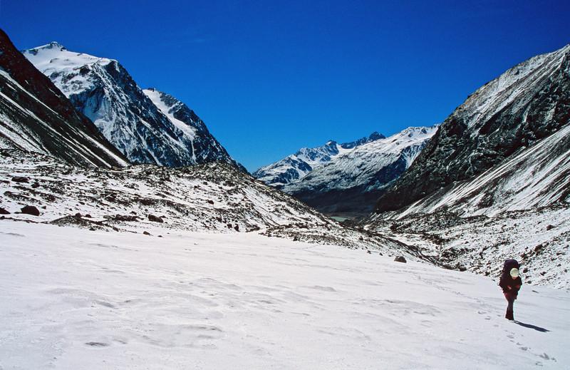 On the Lyell Glacier