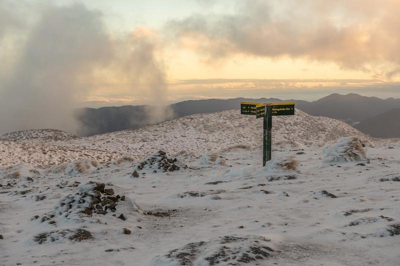 On Hut Mound, Tararua Range