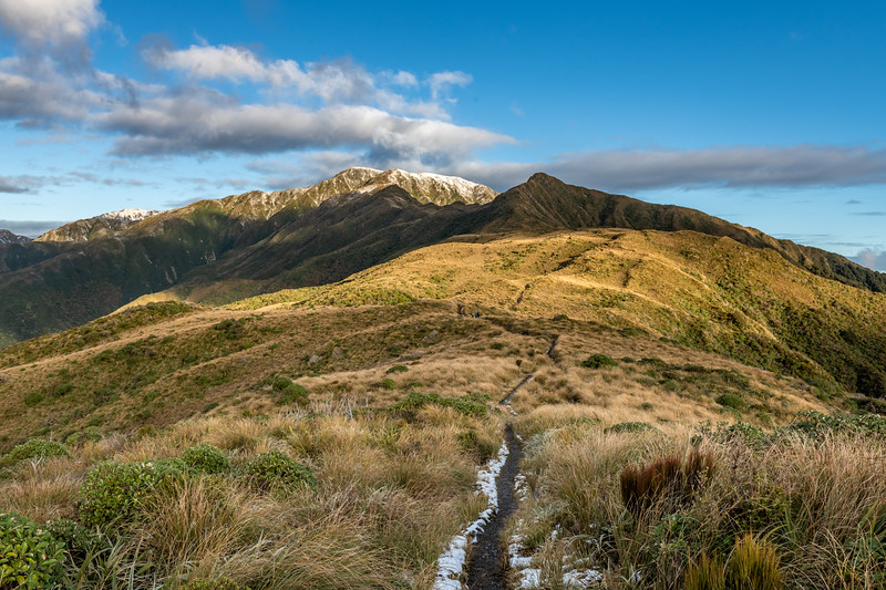 On Table Top, looking ahead to Dennan (front right) and Bridge Peak (left rear). Judd Ridge, Tararua Forest Park.