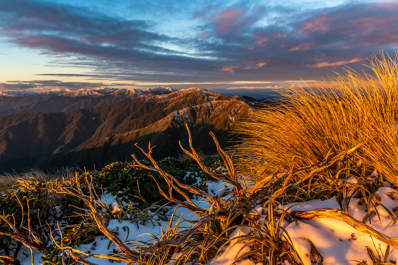 Sunset on the north ridge of Bridge Peak, Tararua Range. Mt Holdsworth and Maungahuka are in the background.