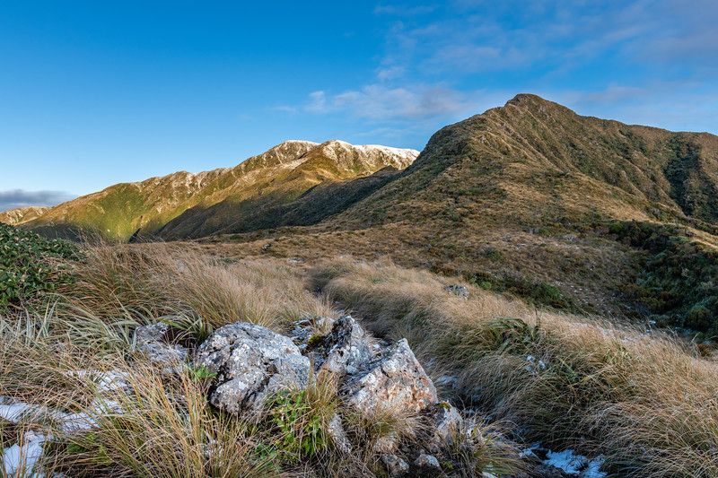 Bridge Peak (bacl left) and Dennan (front right). Judd Ridge, Tararua Forest Park.