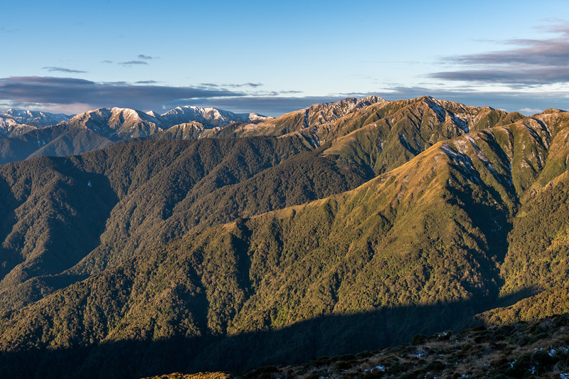 Aokaparangi, Mount Holdsworth, Maungahuka, Tuiti and McIntosh from Judd Ridge. Tararua Forest Park.