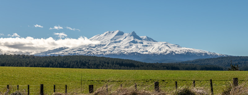View of Mount Ruapehu from the South (SH49).