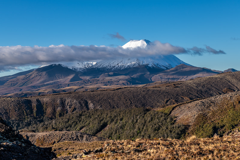 Ngauruhoe from Bruce Road. Whakapapa Village, Tongariro National Park.