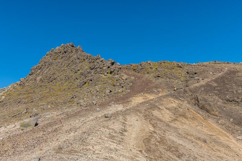 Track to Fanthams Peak, Taranaki
