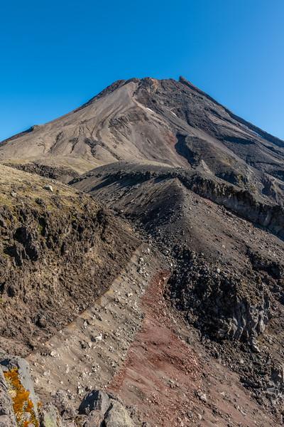 Taranaki Maunga from the track to Fanthams Peak