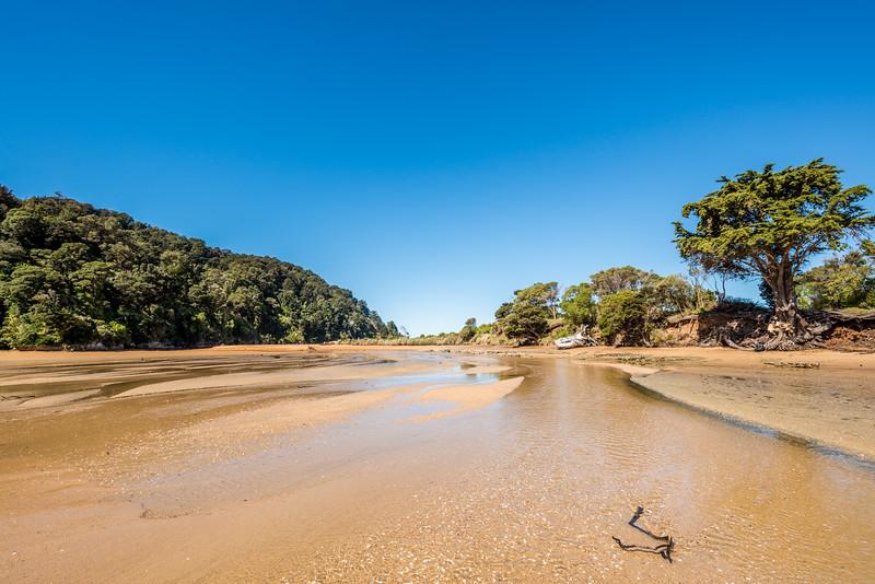 Tōtaranui Stream estuary