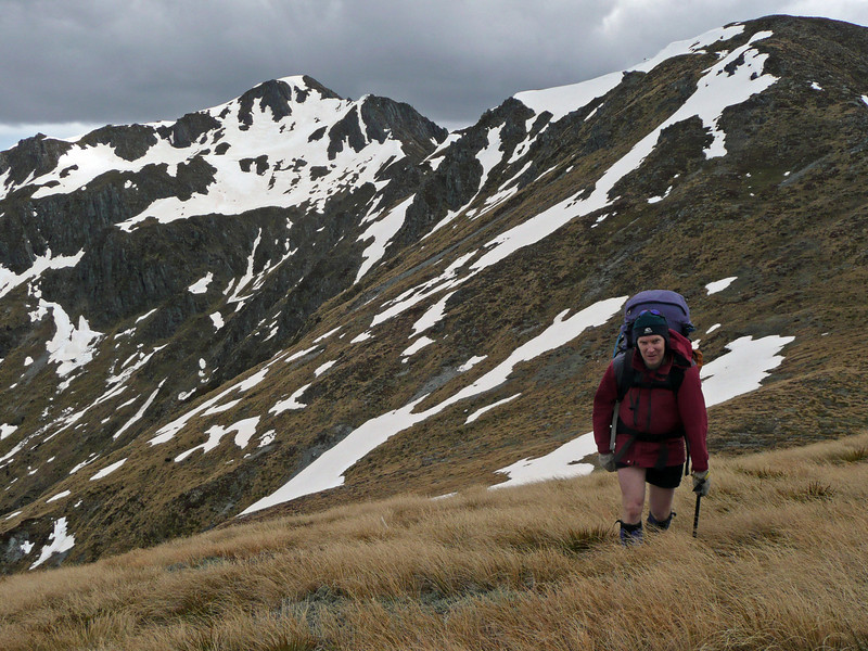 On the Freyberg Range. Photo Jo Hoare.