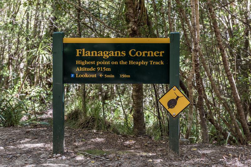 Flanagans Corner, Heaphy Track.