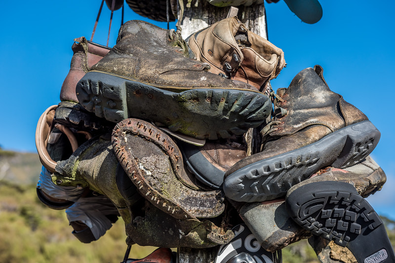 The boot pole. Gouland Downs, Heaphy Track, Kahurangi National Park.