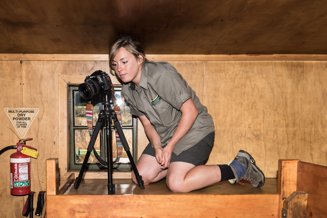 Crystal at work in Gouland Downs Hut