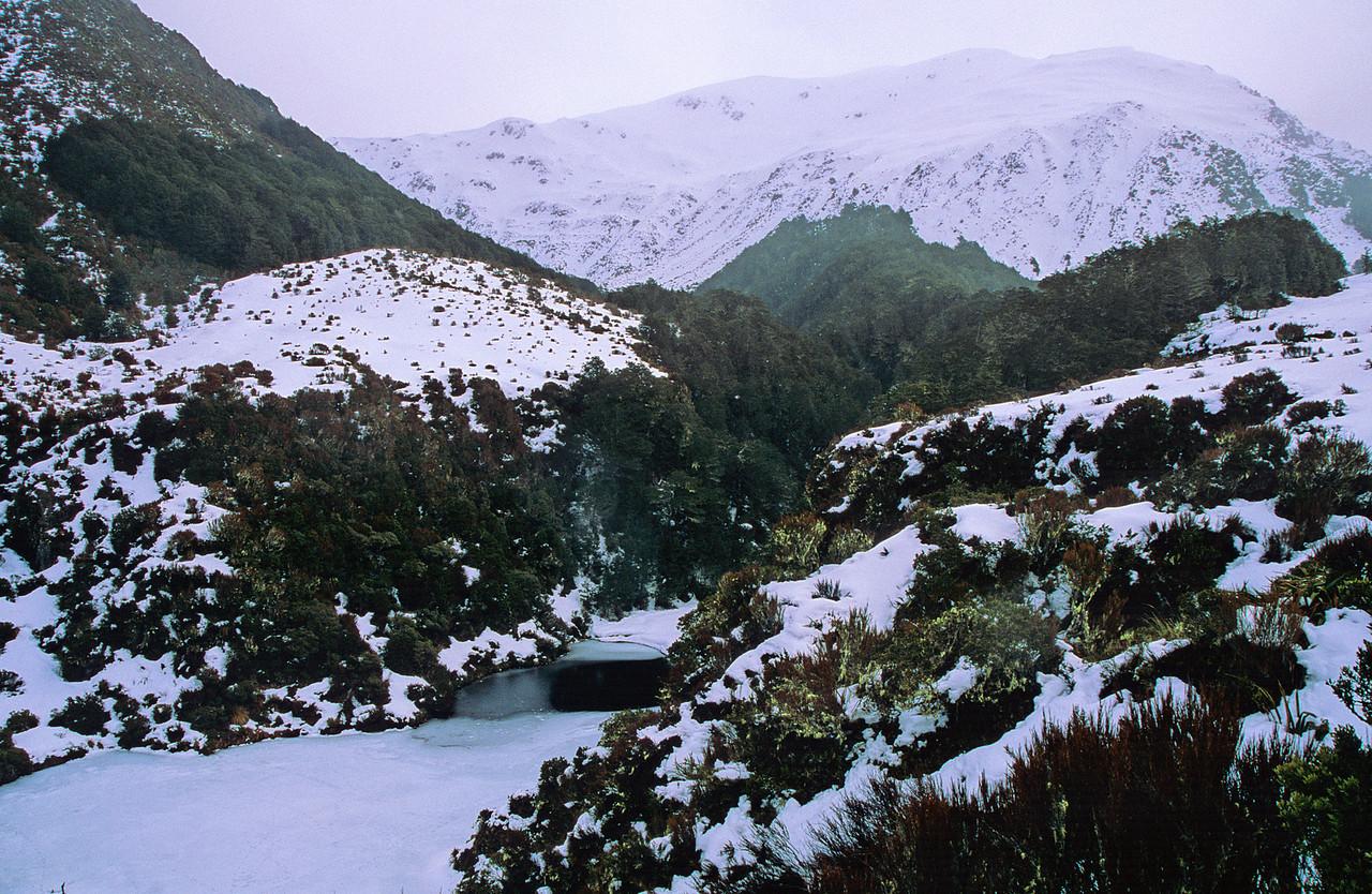Below Roche Pass