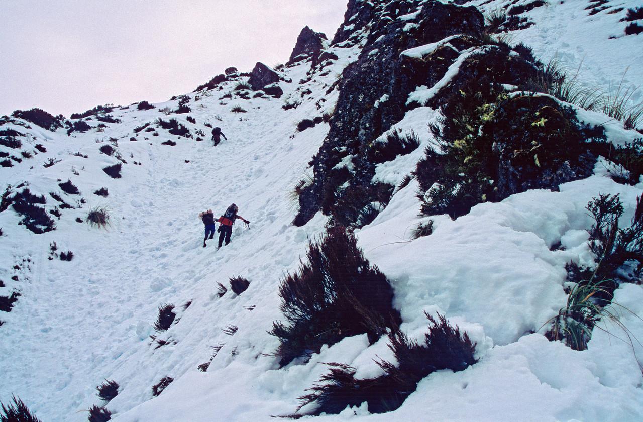 Climbing towards Pass 1430, Dampier Range