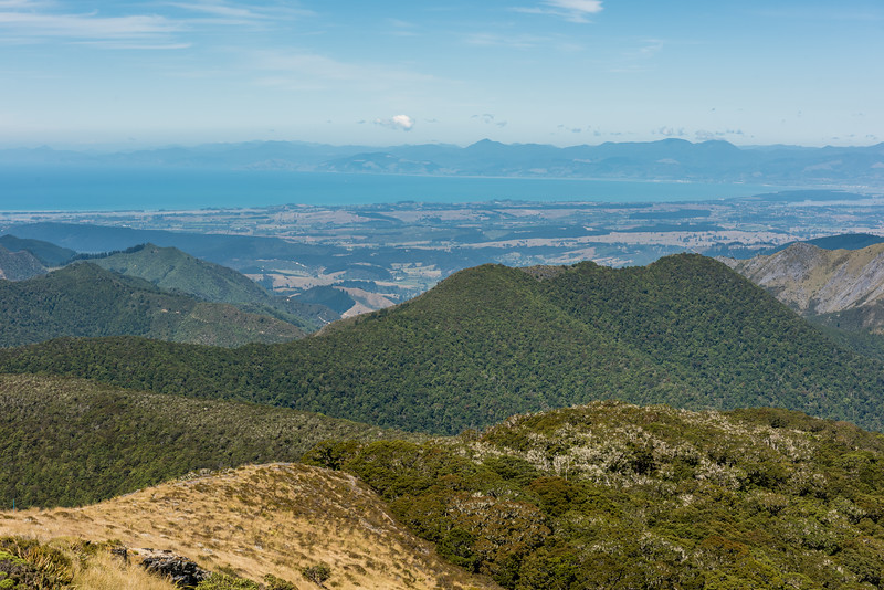 View of Tasman Bay from the north-east ridge of Mount Arthur