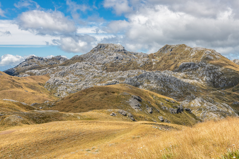Mount Owen and Replica Hill from the north. Kahurangi National Park.
